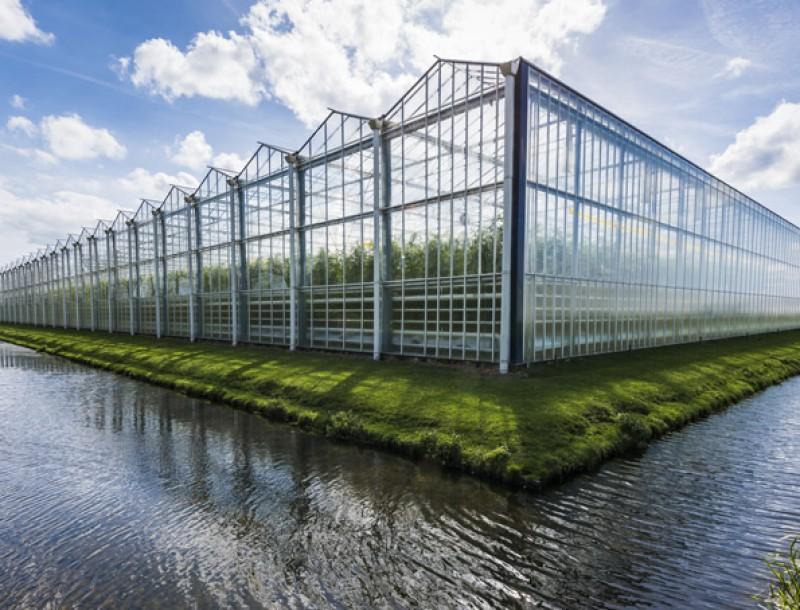 Kemeling Kunststoffen Land en tuinbouw kassen